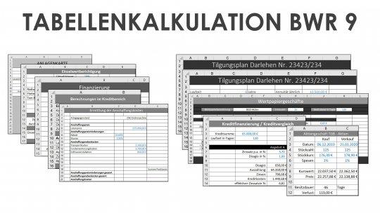 Tabellenkalkulation BWR 9 Einzellizenz