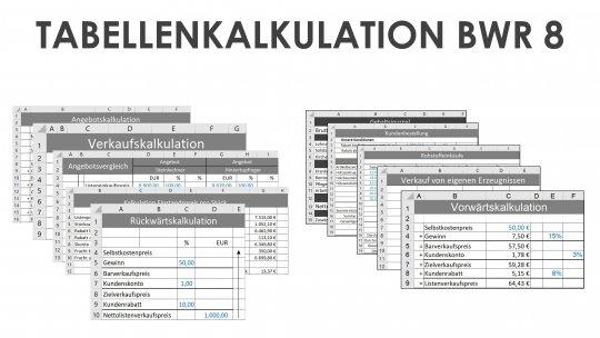 Tabellenkalkulation BWR 8 Schullizenz