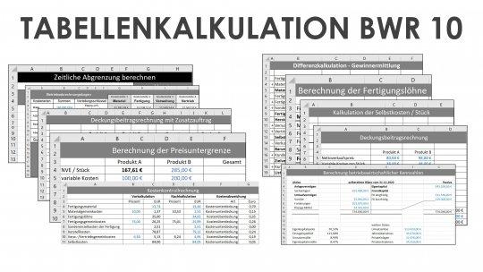 Tabellenkalkulation BWR 10 Einzellizenz
